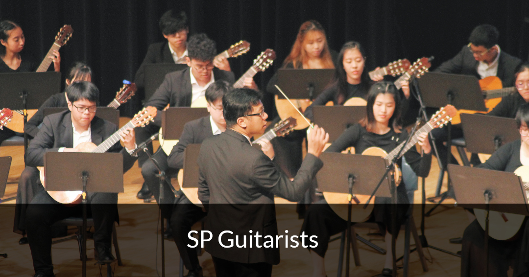 SP Guitarists
